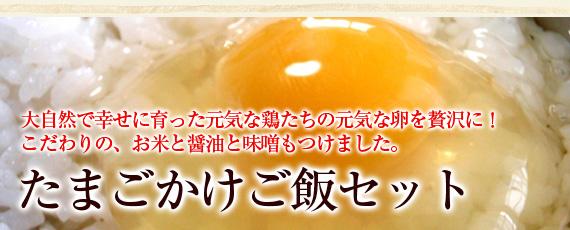大自然の中で幸せに暮らしている自由奔放に育った鶏達が生む元気たっぷりの卵です!こだわりたまごかけご飯セット