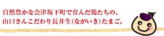 自然豊かな会津坂下町で育んだ鶏たちの、山口さんこだわり長井生(ながいき)たまご。