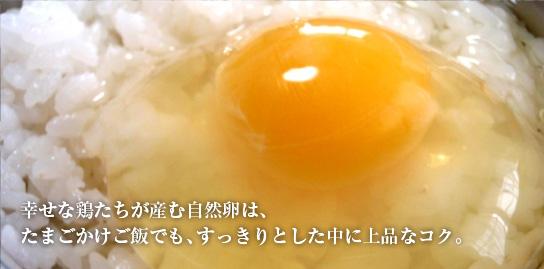幸せな鶏たちが産む自然卵は、たまごかけご飯でもは、すっきりとした中に上品なコク。