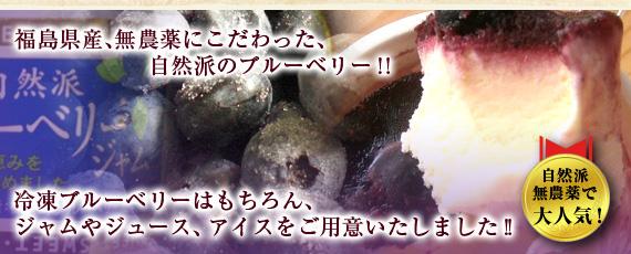 冷凍ブルーベリー・ブルーベリージュース・ブルーベリージャム・ブルーベリーアイスクリーム・ブルーベリーシャーベット
