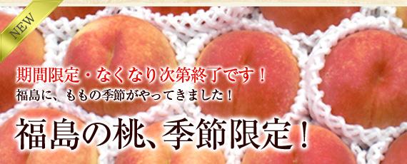 【期間限定!!】桃源郷・福島の桃、先行予約開始!!お待たせしました!大好評、朝摘み・新鮮な桃を農園より直送でお届け!フルーツ王国・福島の中で味と品質に優れた桃!