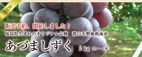 【期間限定】福島県生まれのぶどう・オリジナル品種「あづましずく」2�(3〜4房)