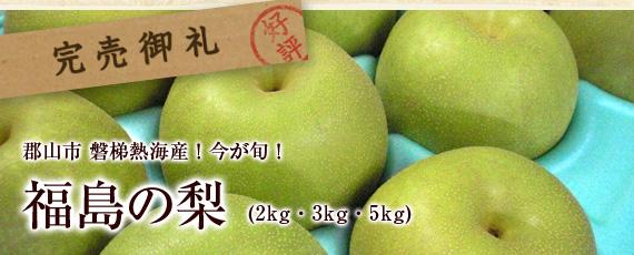 今が旬の季節限定の商品です!福島県郡山市の北西にある温泉地、磐梯熱海で育てられた「福島の梨」