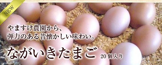 やますけ農園の弾力のある昔懐かしい味わい「ながいき卵」
